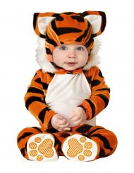 Klassinen tiikeriasu vauvoille