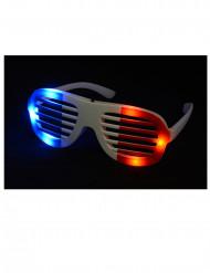 LED lasit trikolori
