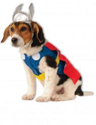 Thor™-naamiaisasu koirille
