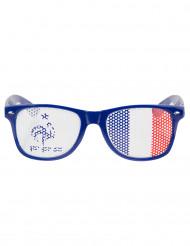 Siniset aurinkolasit, FFF™