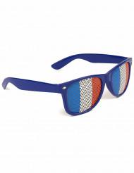 Aikuisten sinivalkopunaiset aurinkolasit