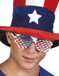 Valkoiset USA:n lippu- aurikolasit aikuiselle