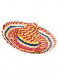 Aikuisten hattu Meksikolainen sombrero