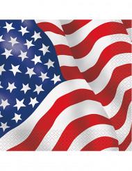 USA:n lippu servetit 16 kpl