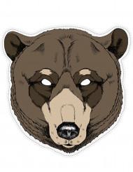 Karhun naamari, pahvia