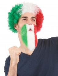 Parta Italian värit