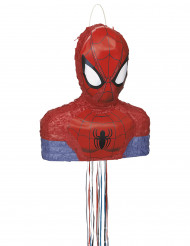 Spiderman™-piñata