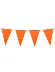 Oranssi lippunauha, 10 m