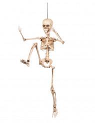 Liikkuva luuranko - Halloween koriste 50 cm