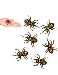 Koristeelliset kullanväriset kovakuoriaiset 6 x 5 cm - 6 kpl - Halloween