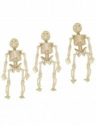 3 Luurankokoristetta Halloween