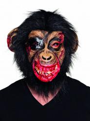 Verisen apinan lateksinaamari aikuisille