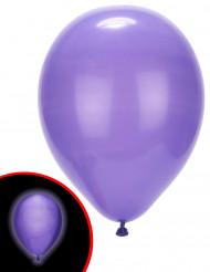 Violetit LED- ilmapallot Illooms® 5 kpl