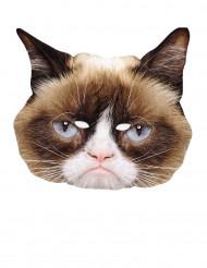 Murjottava kissa- pahvinaamari