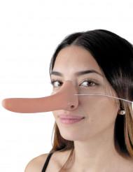 Pienen valehtelijan pitkä nenä