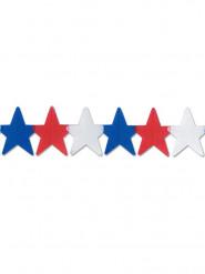 USA-tähtinauha, 3,5 m