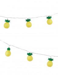 Ananas- valoköynnös 2m10