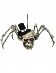 Pääkallohämähäkki - Halloween koriste