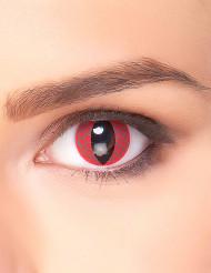 Punaiset lohikäärmeen silmät- piilolinssit aikuiselle