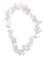 Valkoinen havaijilainen kaulanauha
