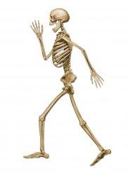Kävelyvä luuranko halloween-koriste 94 cm