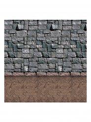 Kivimuuri- seinäkoriste 1,2 x 9,1 m