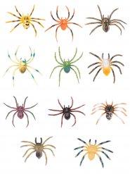 Värikkäät hämähäkkikoristeet
