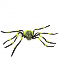 Jättihämähäkki 70 cm