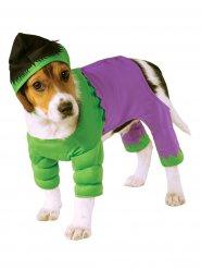 Hulk™ -naamiaisasu koirille