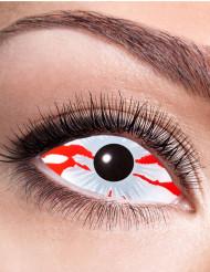 Sclera- verinen silmä- piilolinssit aikuiselle