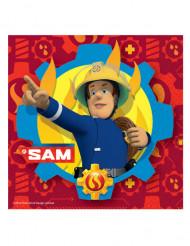 Palomies Sami™ -lautasliinat 20 kpl