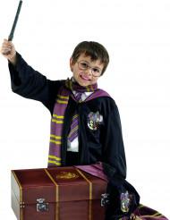 Harry Potter™ -lahjapakkaus lapsille