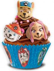 Ryhmä Hau™- koristeet kakun päälle