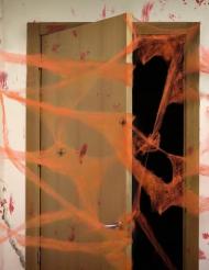 Oranssi hämähäkinseitti ja hämähäkit