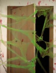 Vihreä hämähäkinseitti ja hämähäkit