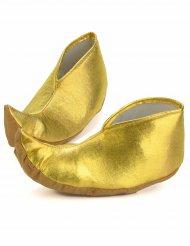 Sulttaanin kengänsuojat