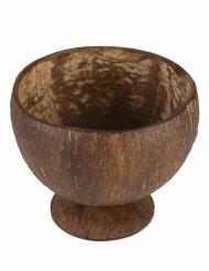 Kookospähkinä-kulho