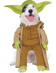 Star Wars™ Yoda -naamiaisasu koirille