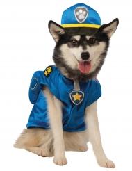 Ryhmä Hau™ -naamiaisasu koirille