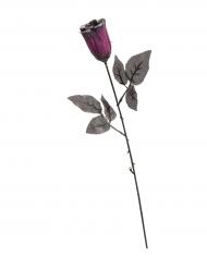Violetti paljettiruusu