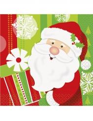 Pieni Joulupukki - servetit 25 x 25 cm 16 kpl