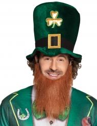 Hattu ja parta (St. Patrick
