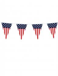 USA -lippunauha