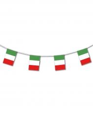 Muovinen Italia-köynnös 5 m