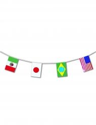 Maailman liput -lippusiima 5 m