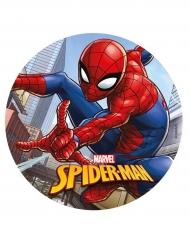Spiderman™ -kakkukuva 20 cm
