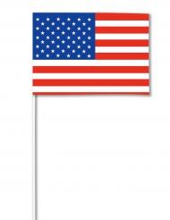 USA-paperilippu