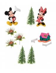 Disney™ Mikki&Minni -kakkukoristesetti