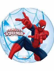 Ultimate Spider-man™ - Kakkukuva valensinisellä taustalla 21 cm