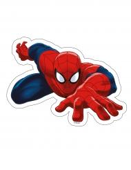 Spider-man™ -kakkukuva 23,2 x 17,3 cm
